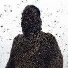 Ушко - Пчёлка (Сингл) 2020