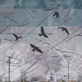 Ермак! - Птицы. Сторона Б (Мини-альбом) 2020